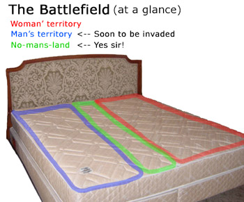 WARNING: This battlefield should only be handled by professionals. Do not engage in this battle without prober guidance or in company of a veteran user.