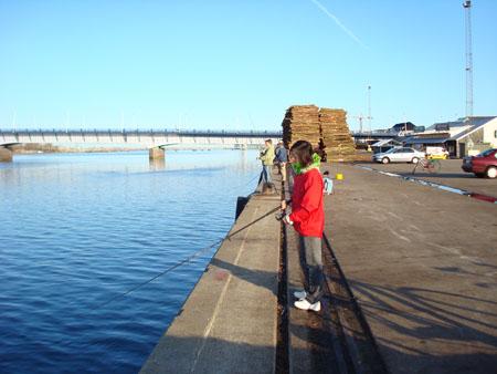 C on the pier